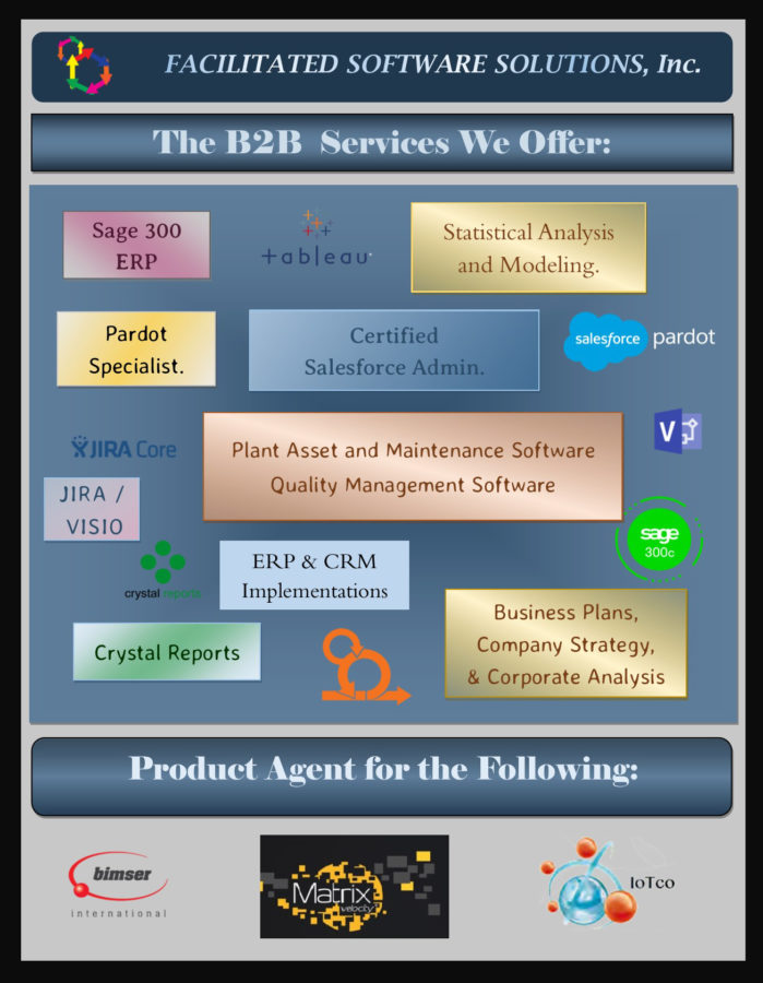 Infograph of the services Facilitated Software Solutions offers